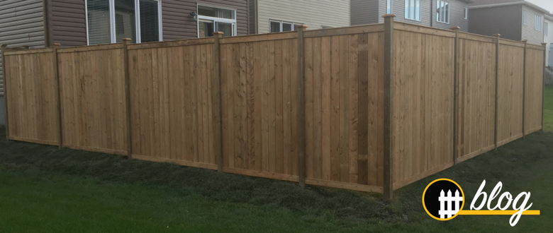 Building a wood fence western red cedar fences vs pressure treated fences